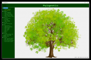 Phylogeny course